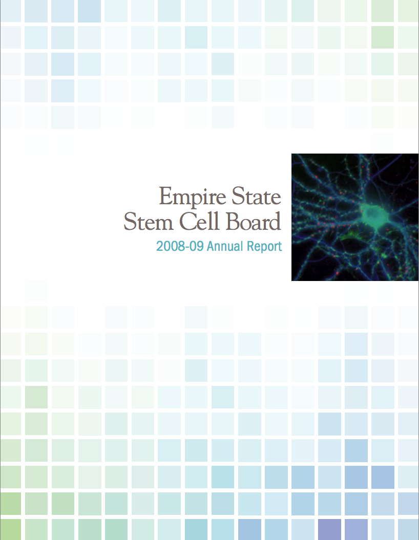 NYSTEM 2008 Annual Report