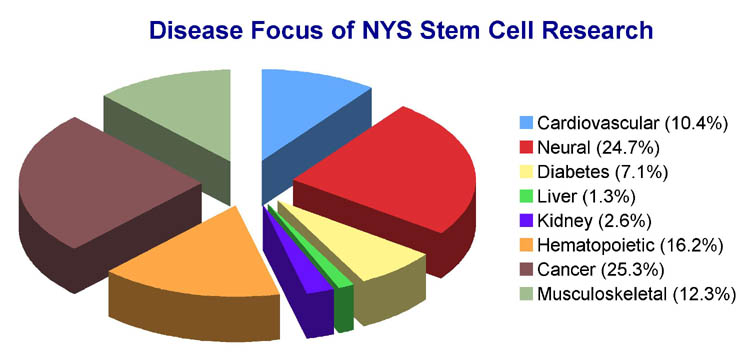 Disease Focus of NYS Stem Cell Research