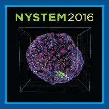 NYSTEM 2016 image