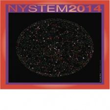 NYSTEM 2014 image